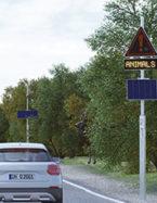 Détection de faune sécurité automobilistes